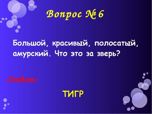 Вопрос № 6 Ответ: