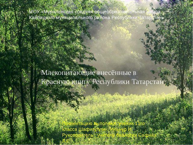 Млекопитающие внесённые в Красную книгу Республики Татарстан МОУ «Муралинска...
