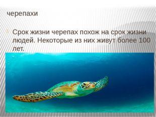 черепахи Срок жизни черепах похож на срок жизни людей. Некоторые из них живут