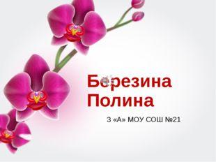 Березина Полина 3 «А» МОУ СОШ №21