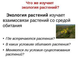 Что же изучает экология растений? Экология растений изучает взаимосвязи расте