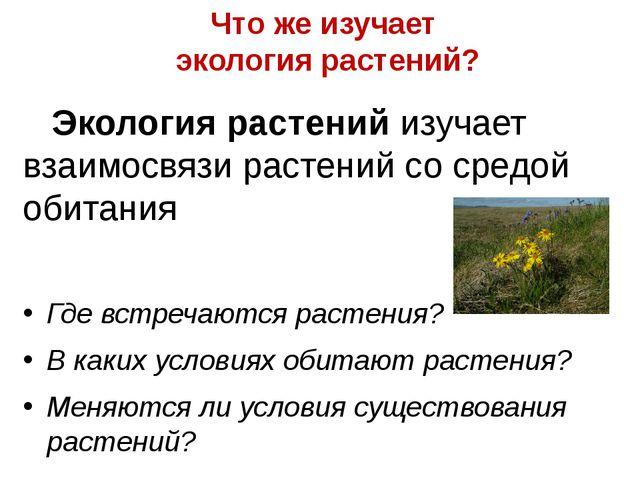 Что же изучает экология растений? Экология растений изучает взаимосвязи расте...