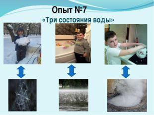 Опыт №7 «Три состояния воды»