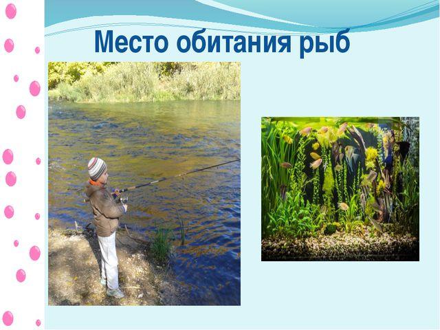 Место обитания рыб