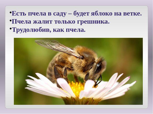Есть пчела в саду – будет яблоко на ветке. Пчела жалит только грешника. Трудо...
