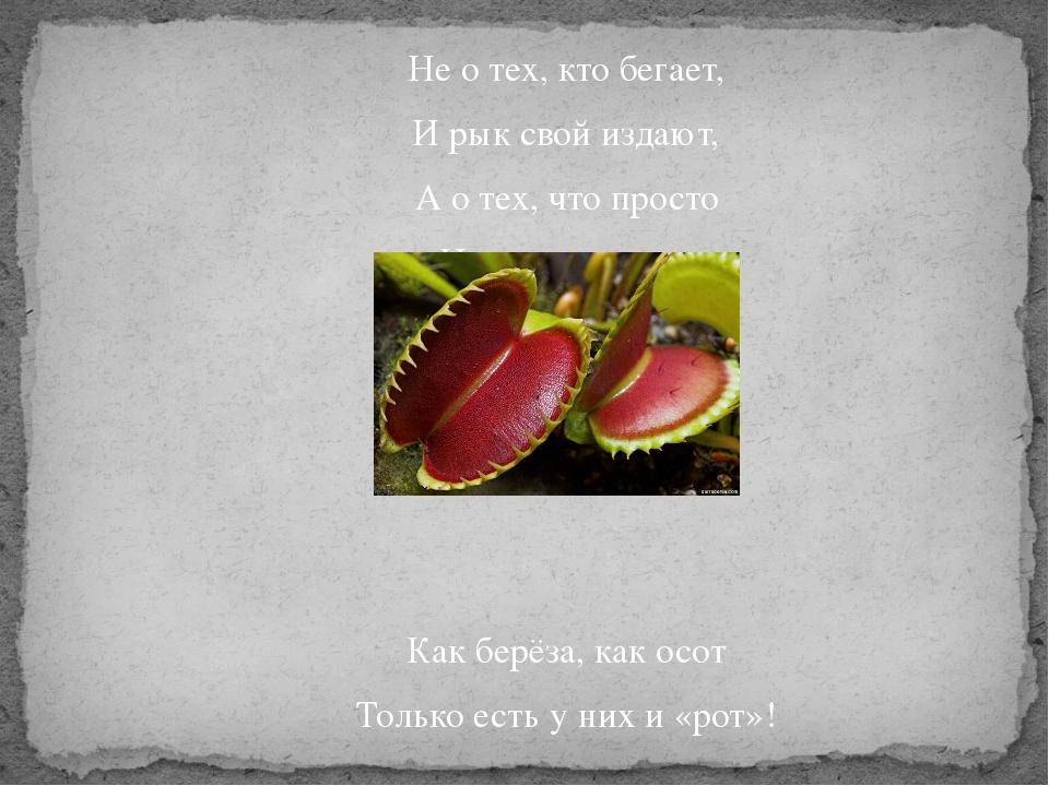Не о тех, кто бегает, И рык свой издают, А о тех, что просто На земле растут...