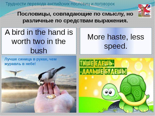 More haste, less speed. Трудности перевода английских пословиц и поговорок A...