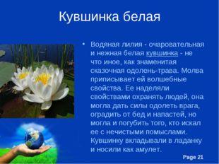 Кувшинка белая Водяная лилия - очаровательная и нежная белая кувшинка - не чт