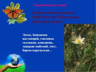Охраняемые растения Лотос, башмачок настоящий, смолевка скальная, женьшень, л