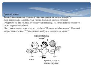 Русский язык. Тема: Знакомство со словами, отвечающими на вопрос какой?... До