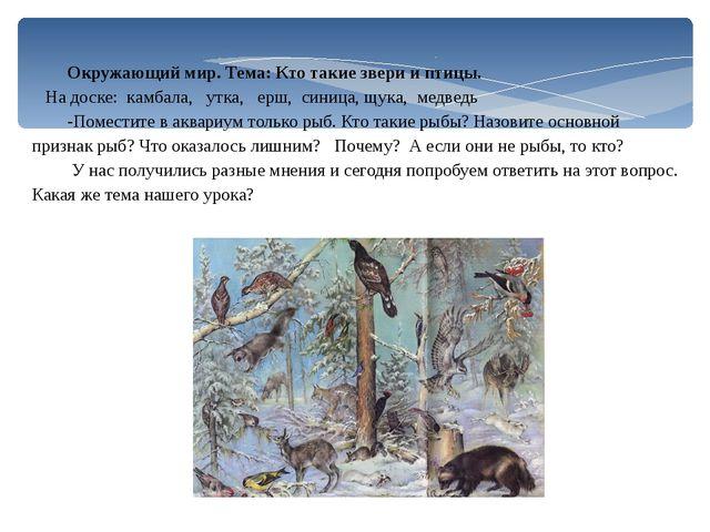 Окружающий мир. Тема: Кто такие звери и птицы. На доске: камбала, утка, ерш,...