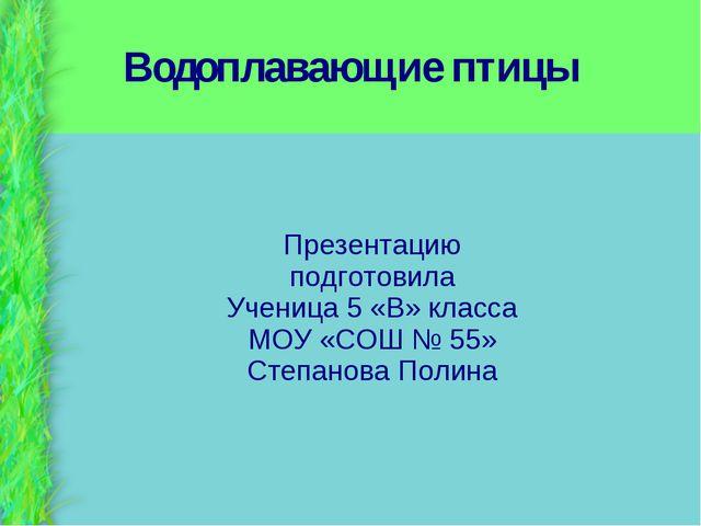 Водоплавающие птицы Презентацию подготовила Ученица 5 «В» класса МОУ «СОШ № 5...