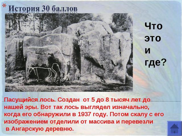 Что это и где? Пасущийся лось. Создан от 5 до 8 тысяч лет до нашей эры. Вот т...