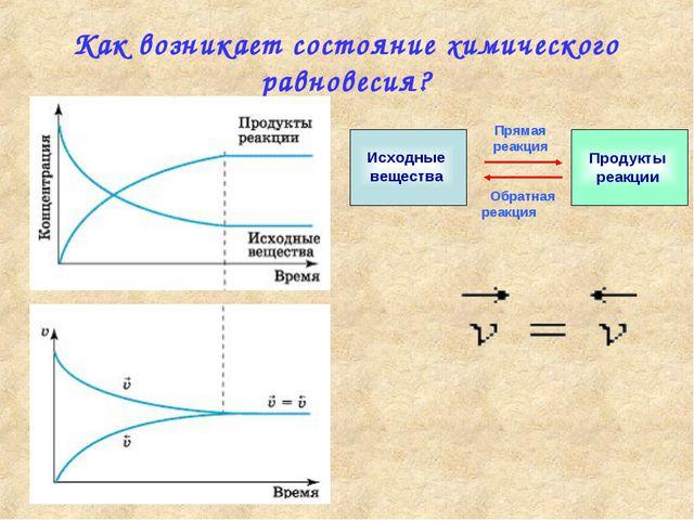 Как возникает состояние химического равновесия? Прямая реакция