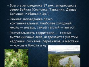 Всего в заповеднике 17 рек, впадающих в озеро Байкал (Сосновка, Таркулик, Дав