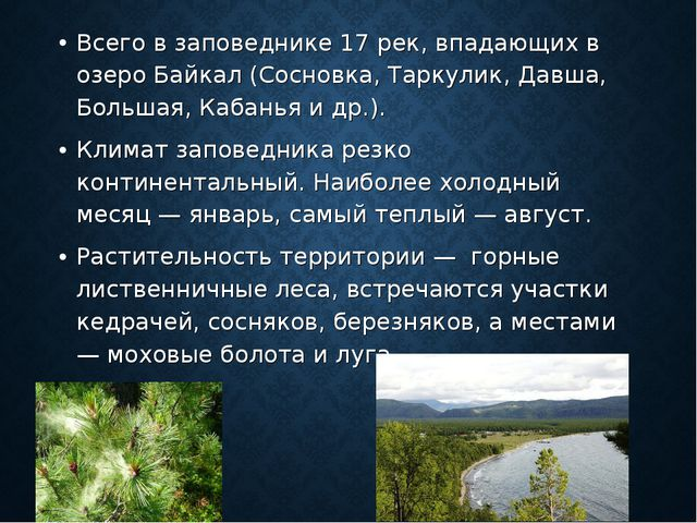 Всего в заповеднике 17 рек, впадающих в озеро Байкал (Сосновка, Таркулик, Дав...