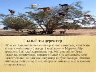 Қызықты деректер Шөп жетіспеушілігінен ешкілер ағашқа шығып, күні бойы ағашт
