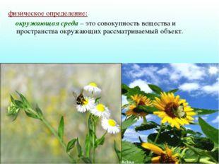 физическое определение: окружающая среда – это совокупность вещества и простр