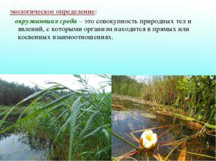 экологическое определение: окружающая среда – это совокупность природных тел