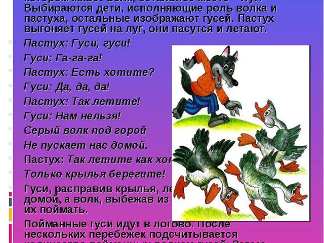 ГУСИ-ЛЕБЕДИ На одном краю площадки обозначается дом, в котором находятся гуси...