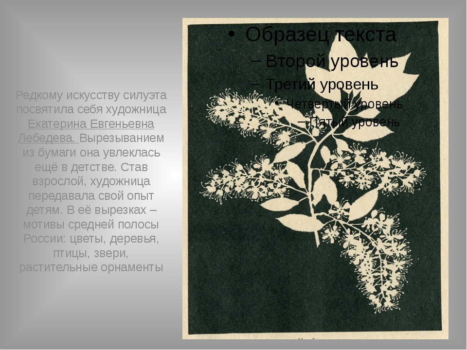 Редкому искусству силуэта посвятила себя художница Екатерина Евгеньевна Лебед...