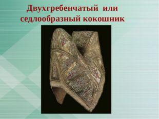 Двухгребенчатый или седлообразный кокошник