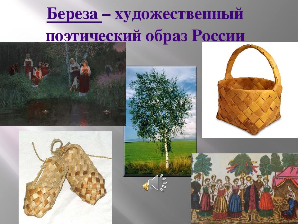 Береза – художественный поэтический образ России