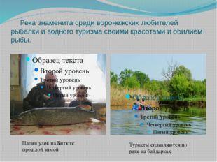 Река знаменита среди воронежских любителей рыбалки и водного туризма своими