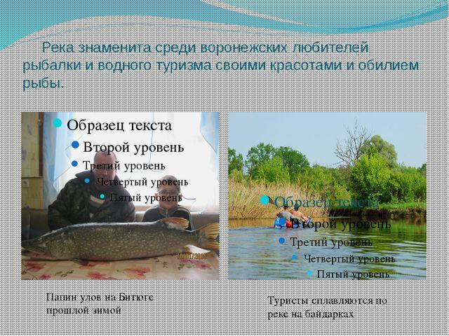 Река знаменита среди воронежских любителей рыбалки и водного туризма своими...