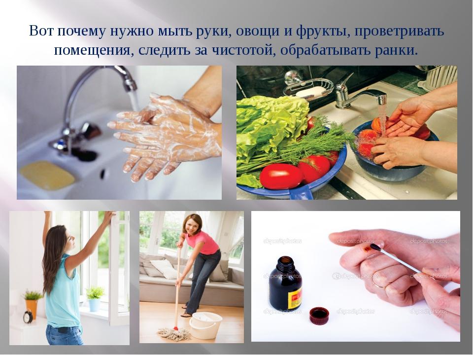 Вот почему нужно мыть руки, овощи и фрукты, проветривать помещения, следить з...