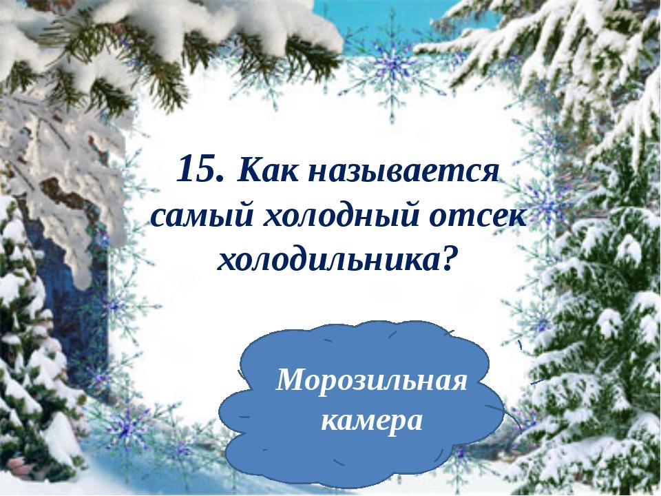 15. Как называется самый холодный отсек холодильника? Морозильная камера
