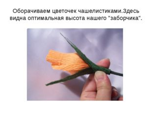 """Оборачиваем цветочек чашелистиками.Здесь видна оптимальная высота нашего """"заб"""