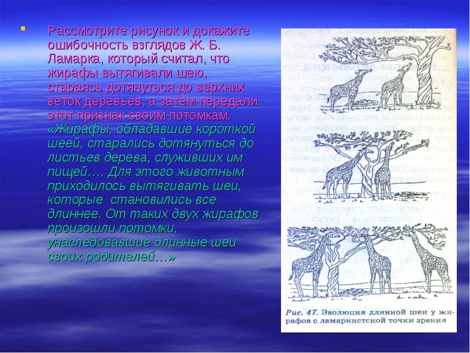 Рассмотрите рисунок и докажите ошибочность взглядов Ж. Б. Ламарка, который сч...