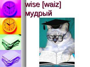 wise [waiz] мудрый