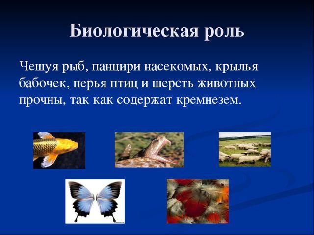 Биологическая роль Чешуя рыб, панцири насекомых, крылья бабочек, перья птиц и...