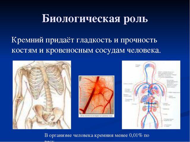 Биологическая роль Кремний придаёт гладкость и прочность костям и кровеносным...