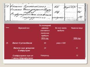 Семья Мужской полПо последней ревизии состояло и после оно прибыло 1816 го