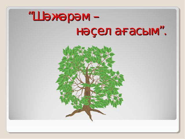 """Шәжәрәм – нәҫел ағасым""."