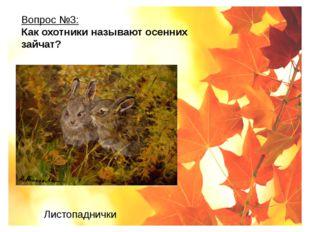 Вопрос №3: Как охотники называют осенних зайчат? Листопаднички