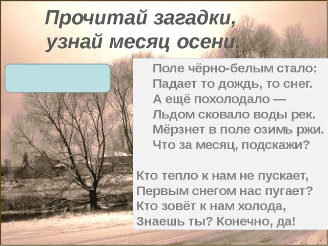 Прочитай загадки, узнай месяц осени. Поле чёрно-белым стало: Падает то дождь,...