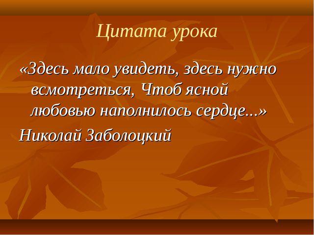 Цитата урока «Здесь мало увидеть, здесь нужно всмотреться, Чтоб ясной любовью...