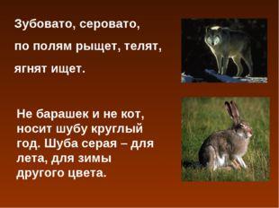 Зубовато, серовато, по полям рыщет, телят, ягнят ищет. Не барашек и не кот, н