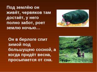 Под землёю он живёт, червяков там достаёт, у него полно забот, роет землю ноч