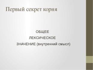 Первый секрет корня ОБЩЕЕ ЛЕКСИЧЕСКОЕ ЗНАЧЕНИЕ (внутренний смысл)