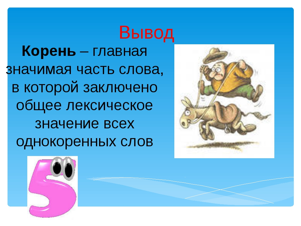 Вывод Корень – главная значимая часть слова, в которой заключено общее лексич...