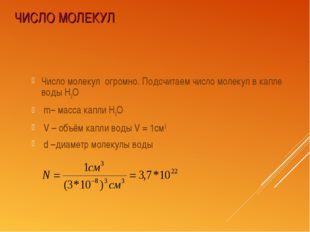 ЧИСЛО МОЛЕКУЛ Число молекул огромно. Подсчитаем число молекул в капле воды Н2