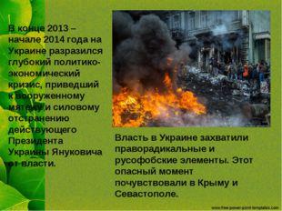 В конце 2013 –начале 2014 года на Украине разразился глубокий политико-эконом