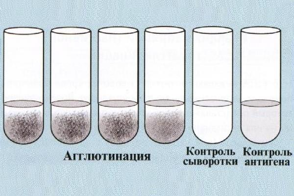 http://knu.znate.ru/pars_docs/refs/564/563746/563746_html_m41a80463.jpg