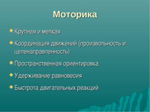 Моторика Крупная и мелкая Координация движений (произвольность и целенаправле
