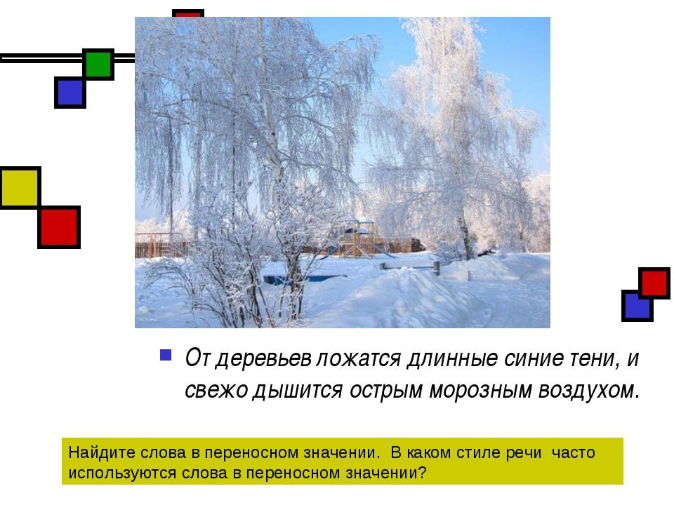 От деревьев ложатся длинные синие тени, и свежо дышится острым морозным возду...